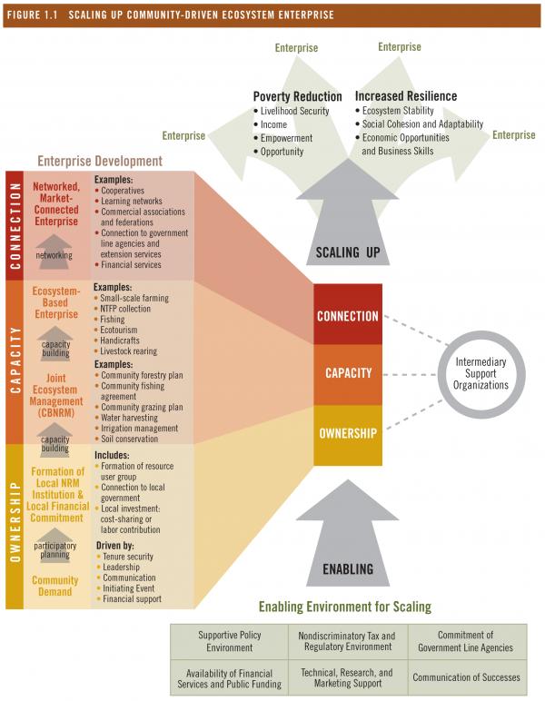 Scaling Up Community Driven Ecosystem Enterprise World Resources