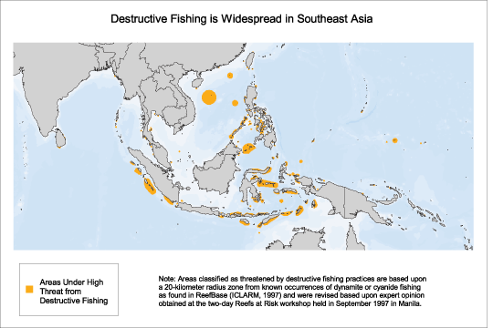 Destructive Fishing Is Widespread In Southeast Asia