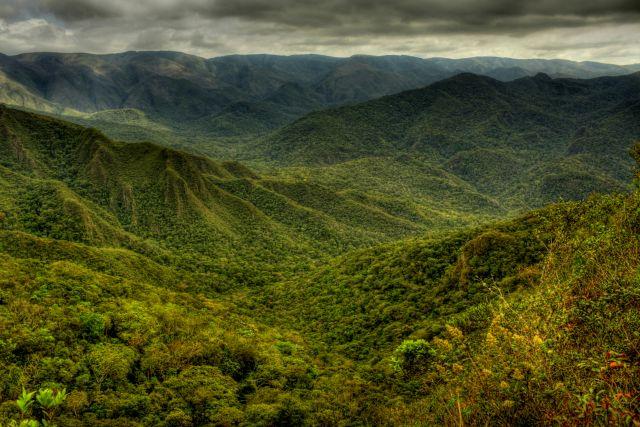 Serra da Gandarela National Park includes part of the Atlantic Forest. Flickr/Federico Pereira