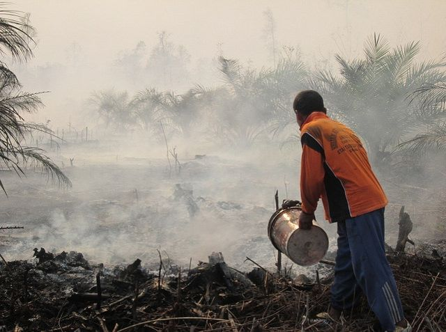 Forest and peat fires in Riau, Indonesia
