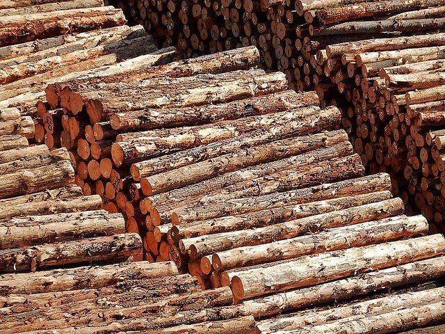 Stacks of Logs