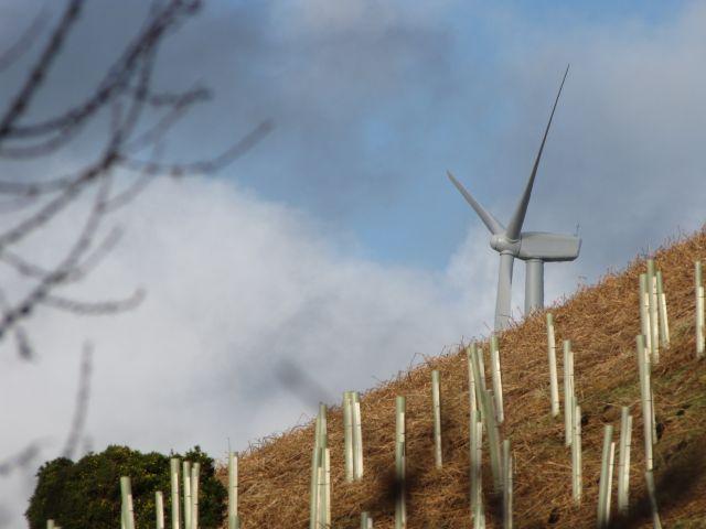 Green Knowes wind farm in Balado, Scotland. Flickr/John Moriarty