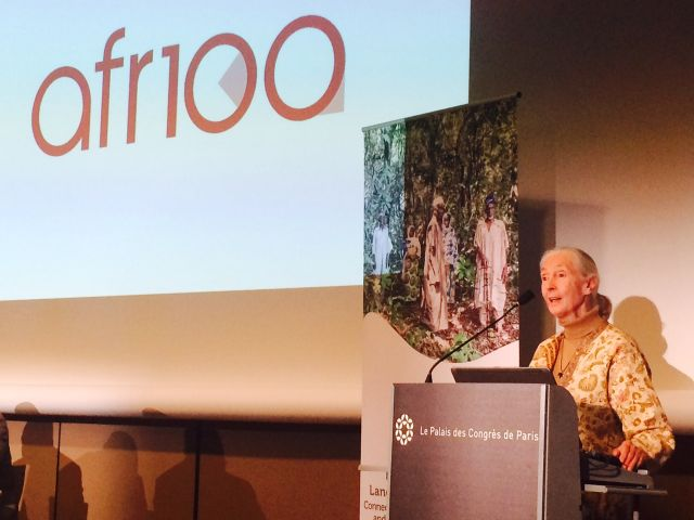 Jane Goodall at AFR100 launch, Paris. Credit: Michael Oko/WRI