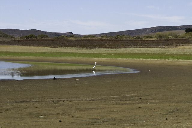 California's drought has dragged on for four years. Photo by Yana Edwin Murphy/Flickr