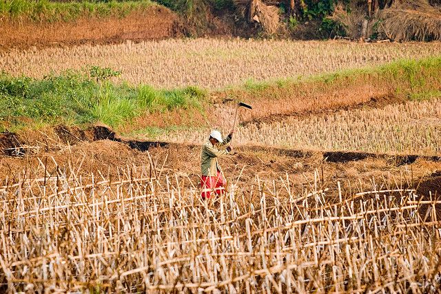 As climate change impacts like heatwaves and drought become more evident, countries will need to submit their emissions-reduction plans. Photo credit: Danumurthi Mahendra, Flickr