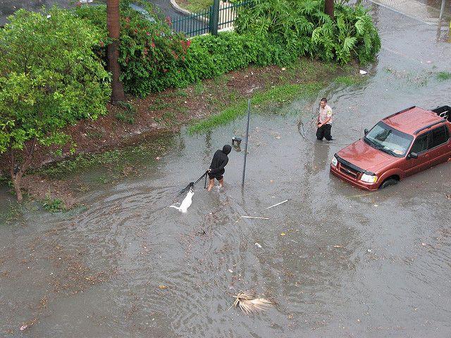 South Beach flooding