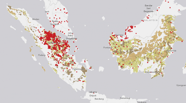 Indonesia fires and concessions map june 12 20 2013 world forest fires in indonesia are causing heavy haze this week in indonesia singapore and parts of malaysia explore forest fire alerts for june 12 20 gumiabroncs Gallery