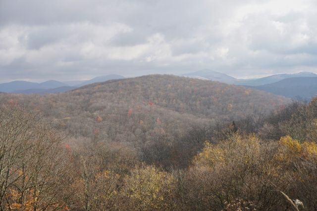 Views over the Monongahela National Forest in the fall. Photo: Sabin Ray, WRI