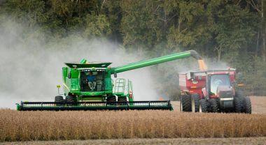 Soybean harvesting in Caroline County, Md.