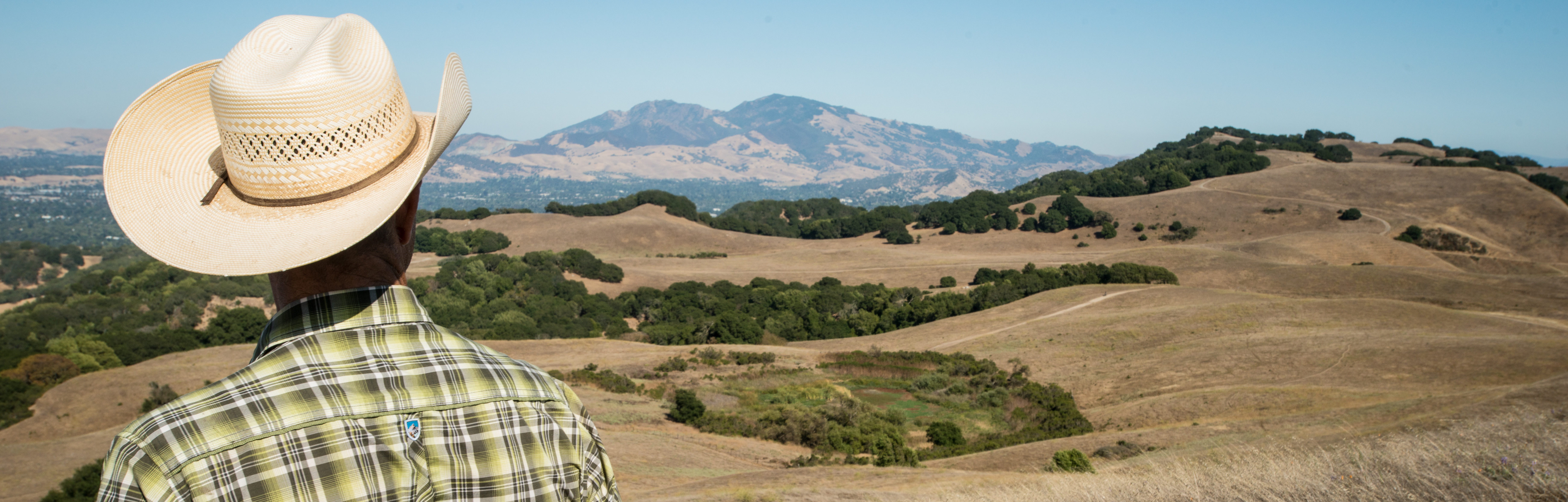 <p>A rancher looks out over drought-afflicted land in California. (Flickr/US Department of Agriculture)</p>