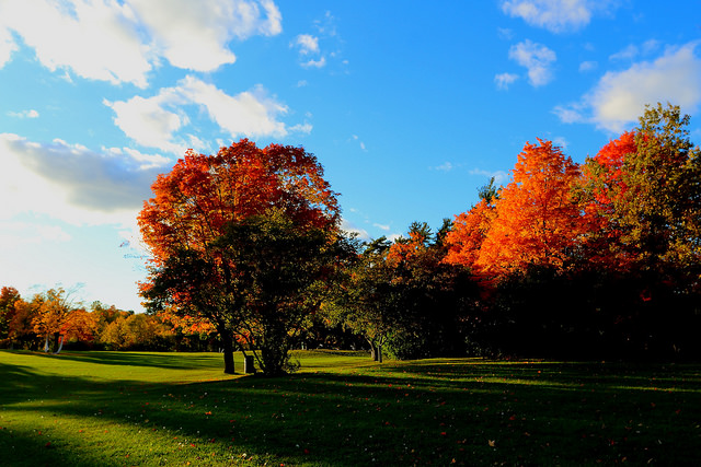<p>Massey Park in Ottawa, the Canadian capital. Photo by Andrew Moor/Flickr</p>