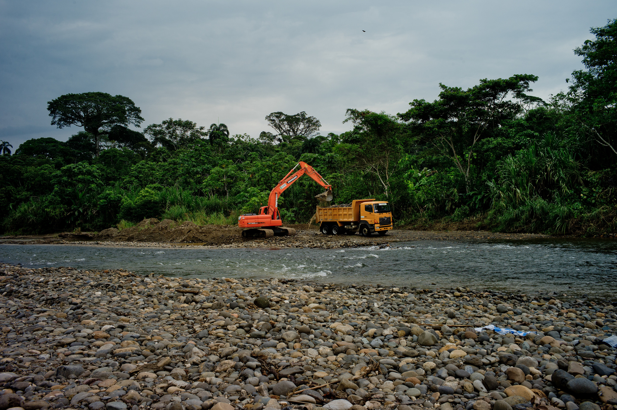 <p>Heavy machinery removing trees in Ecuador. Flickr/CIFOR</p>