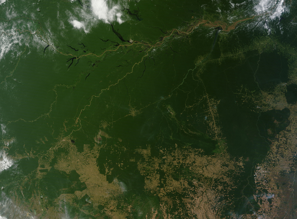<p>Satellite view of deforestation (bottom-right) in Brazil. Flickr/NASA Goddard</p>