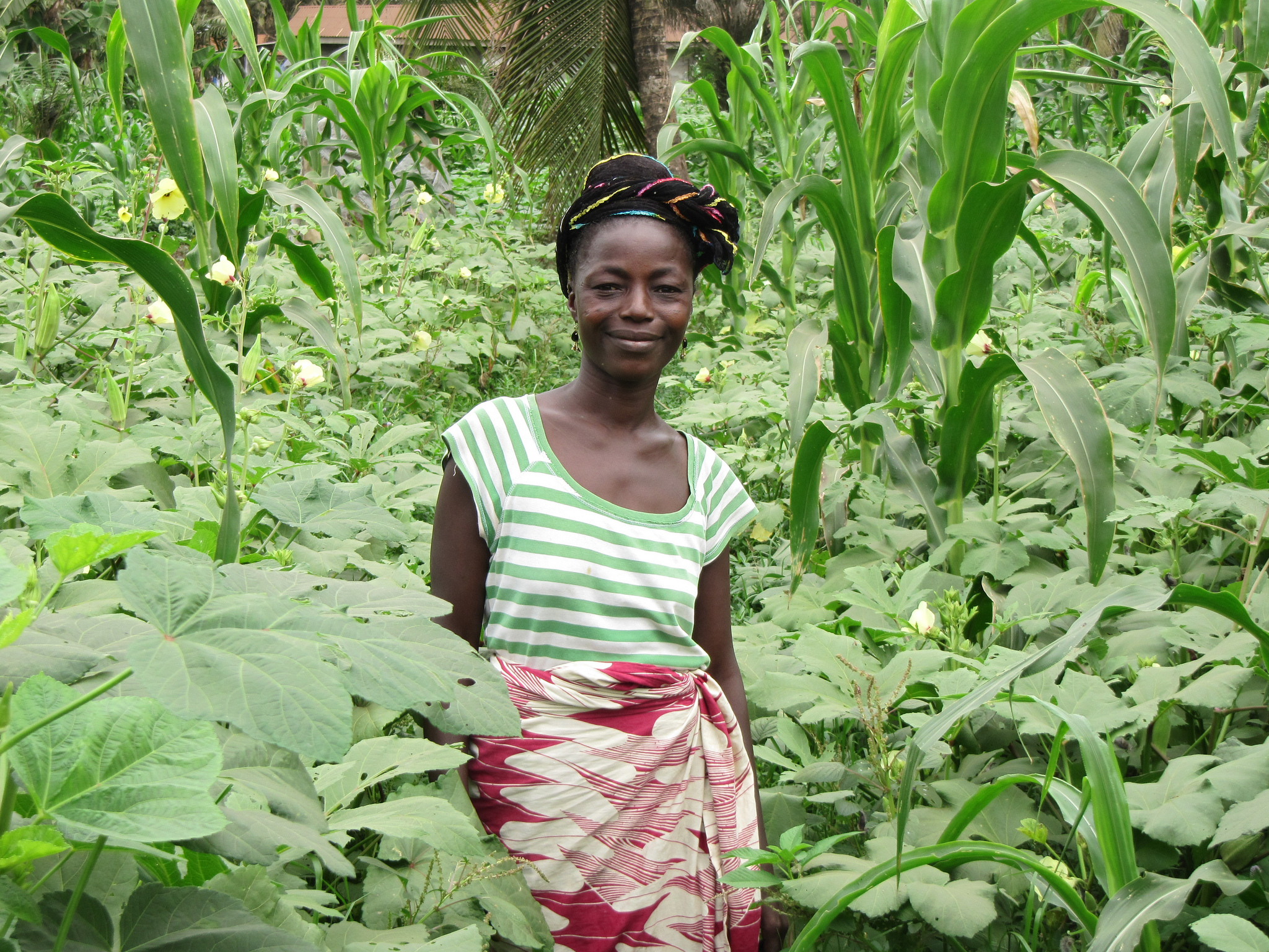 <p>Liberian woman in her field. Flickr/European Commission</p>
