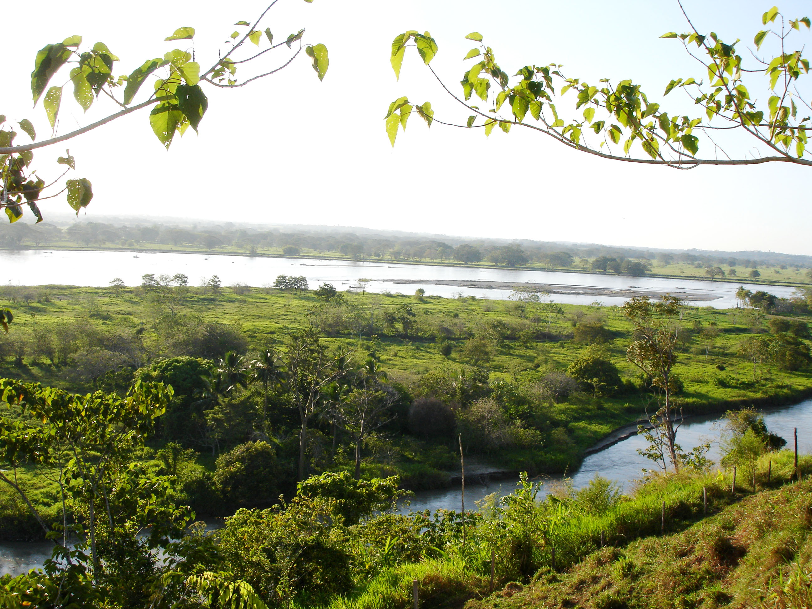 <p>The Cauca river, Colombia. Photo by corazon de melon/Wikimedia Commons</p>
