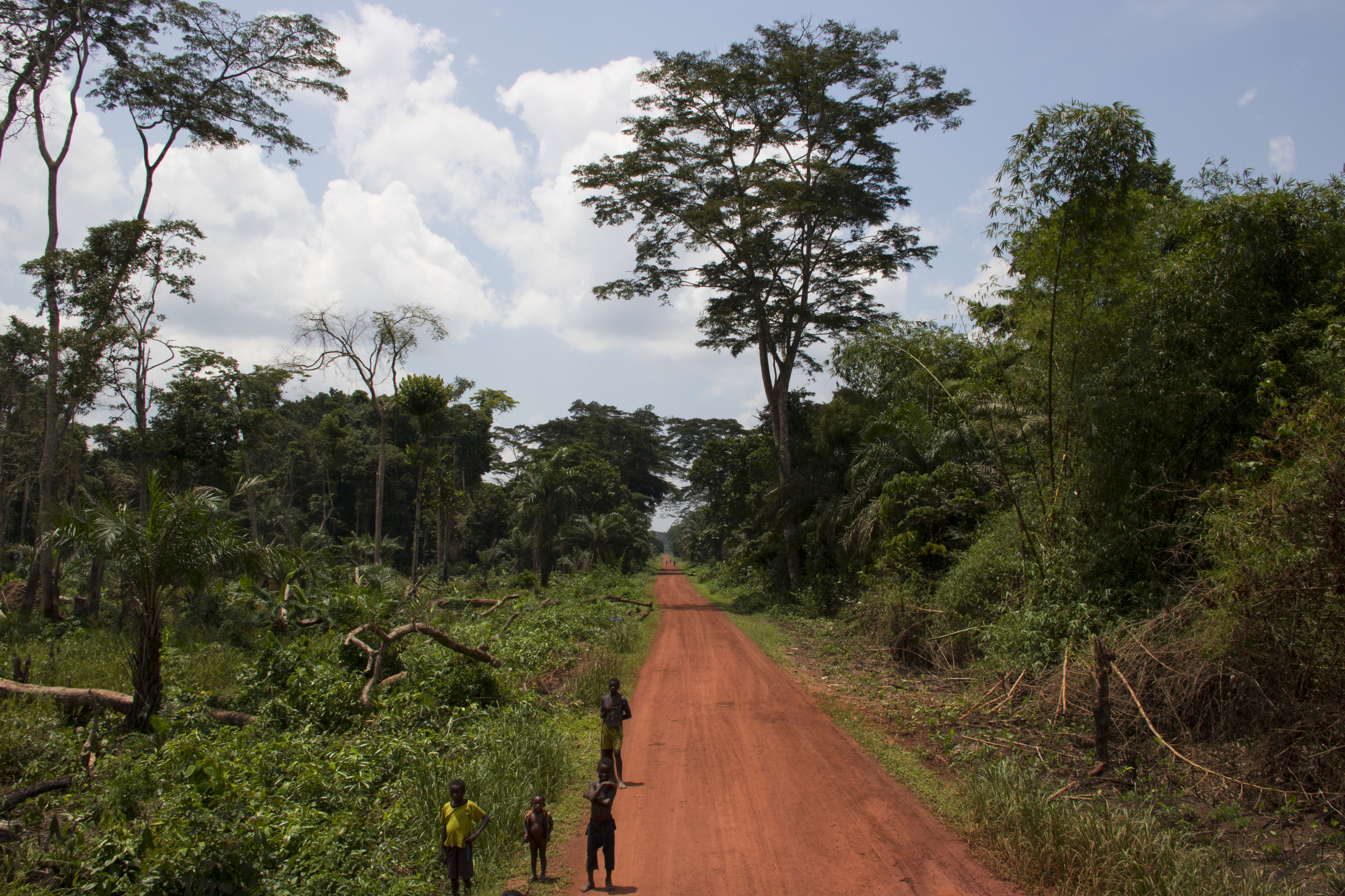 <p>Near the village of Ilanga in northwestern DRC. Photo by Molly Bergen/WCS, WWF, WRI</p>