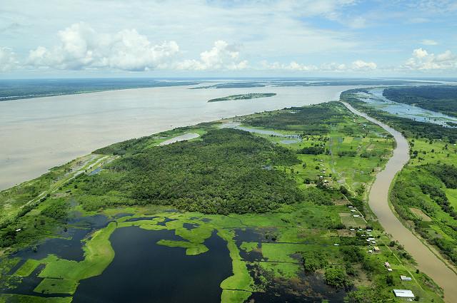 <p>Tampak atas Sungai Amazon, Brasil. Foto oleh Neil Palmer/CIAT</p>
