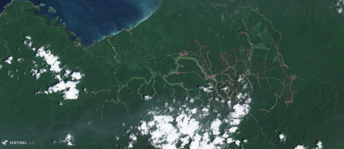 <p>Satellite imagery shows logging roads (brown and light green) encroaching into intact forest in East New Britain Province. Image by Sentinel Hub, October 28, 2017</p>