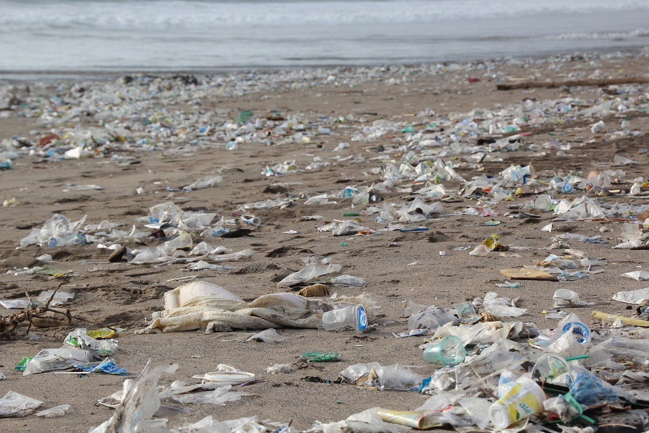 <p>There is growing consumer backlash against plastic waste, especially because of the dangers it poses to the world\'s oceans. Photo by hhach/Pixabay</p>