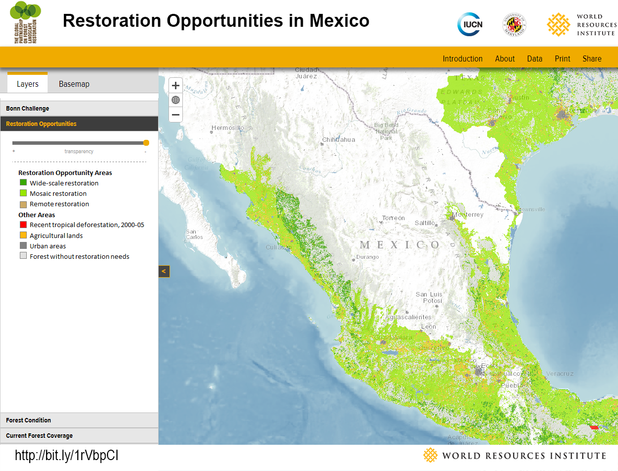 <p>Mexico has nearly 40 million hectares of degraded land with the potential to be restored. Much of this land lies in the southern half of the country, and can be restored to a mosaic landscape.</p>
