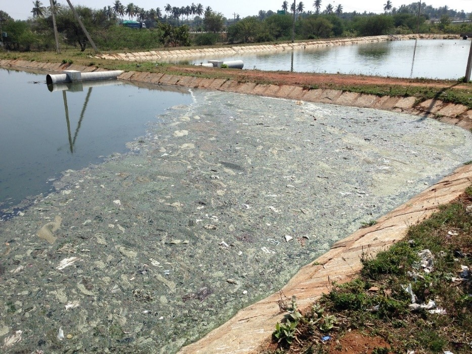 <p>Wastewater treatment facilities in most towns are rudimentary, as shown here.  Photo by Vittal Boggaram/WRI</p>
