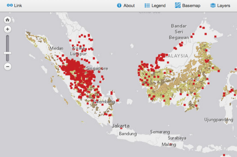Forest Fires in Indonesia - June 2013 | World Resources Institute