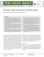 <p>Download WRI\'s issue brief, <em>Insights from the Field: Forests and Water</em></p>