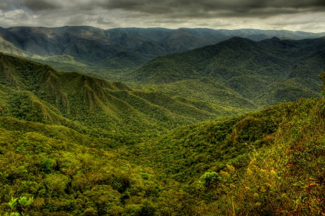 Serra da Gandarela National Park includes part of the Atlantic Forest. Flickr/Federico Pereira