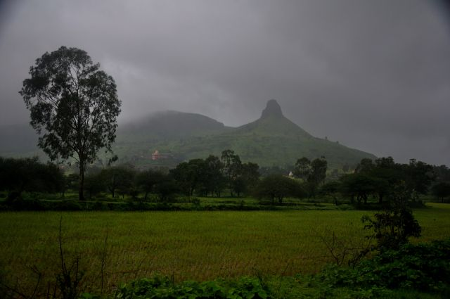 Field in Trimbak, Maharashtra, India