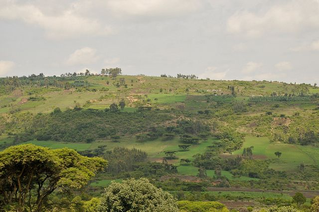 Restoration at work on Ethiopia's steep slopes
