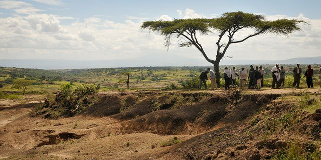Tree Planting and Degraded Landscape, Ethiopia