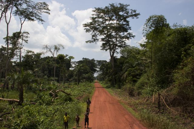 Road near the village of Ilanga in the DRC. Photo by Molly Bergen/WCS, WWF, WRI