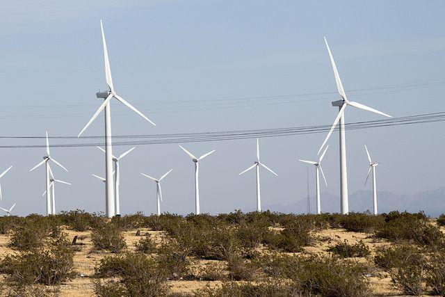 Wind turbines in California.