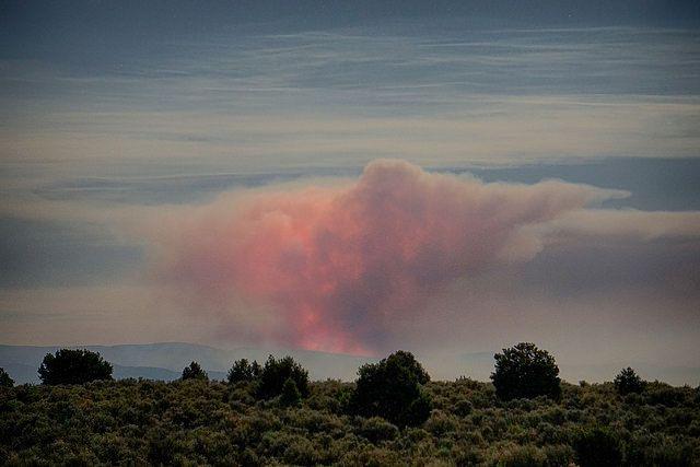 Sardinas Canyon fire