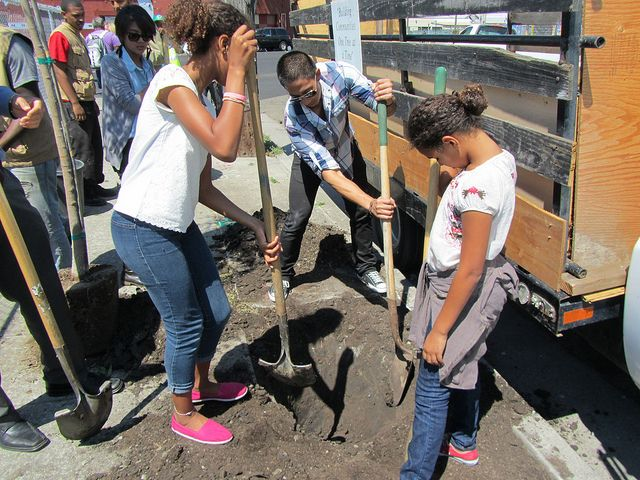 young people preparing ground for tree planting