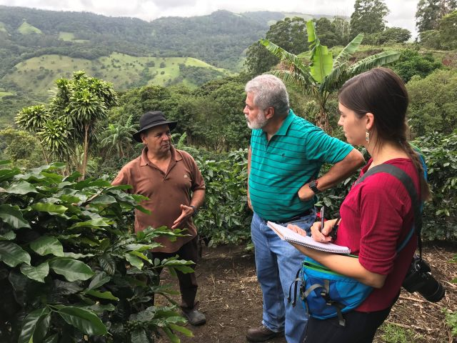 Coffee farmer Don Luis explains incremental adaptation measures he's undertaken, like planting new coffee varieties resistant to coffee leaf rust and introducing shade trees. Photo: Rebecca Carter/WRI