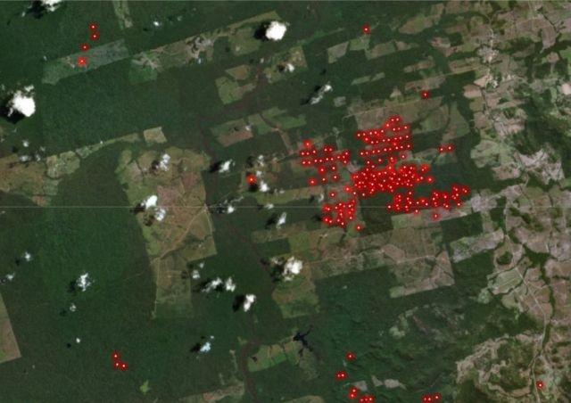 GFW Satellite Fires image