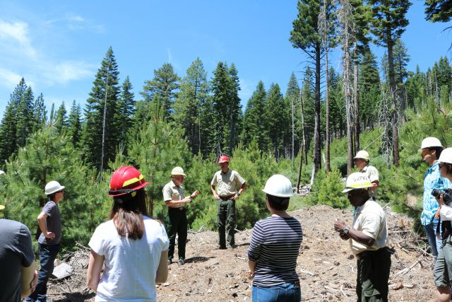 Learning about forest resilience with rangers. Photo: Leah Schleifer