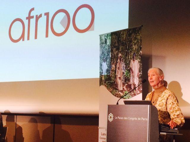 Jane Goodall at AFR100 launch, Paris. Credit: Michael Oko/WRI