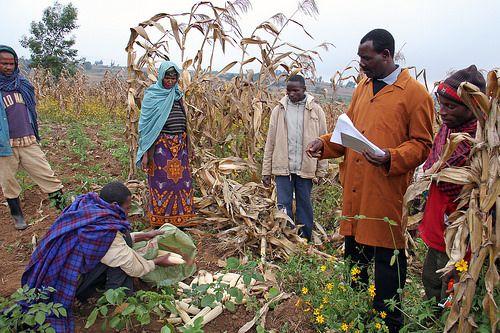 Farmers in Babati, Tanzania