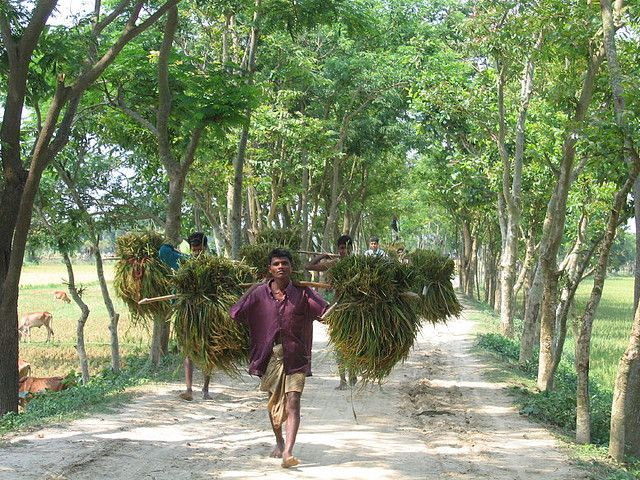 The World Bank's two new goals focus on ending extreme poverty and fostering shared prosperity. Photo credit: Jankie, Flickr