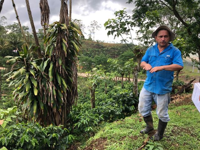 Don Armando Navarro explica las medidas de adaptación que ha implementado en su finca, como la construcción de terrazas. Fotografía: Stefanie Tye