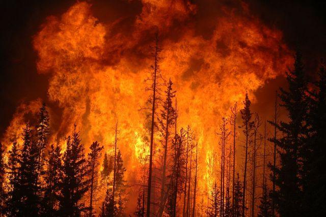 forest fire in Alberta, Canada