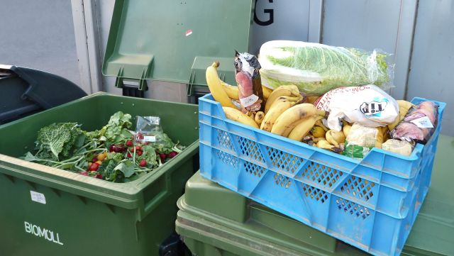Recovered food waste