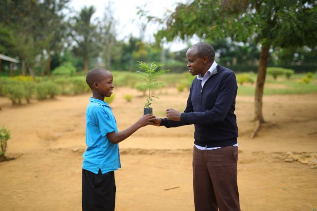 Planting trees in Rwanda