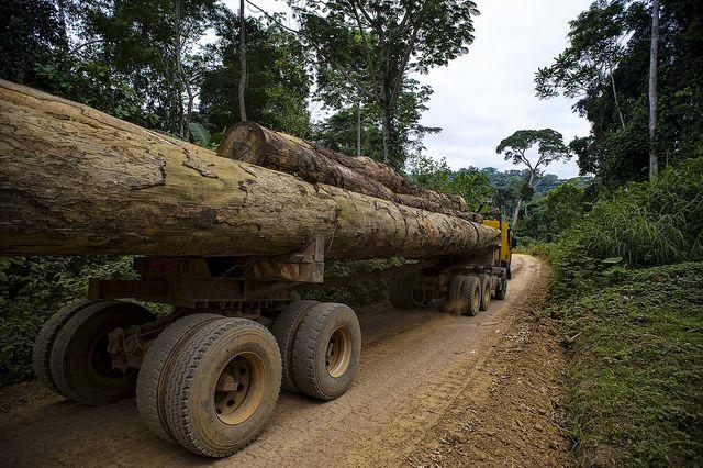 Camión de madera en Camerún. Foto: Ollivier Girard/CIFOR/Flickr.