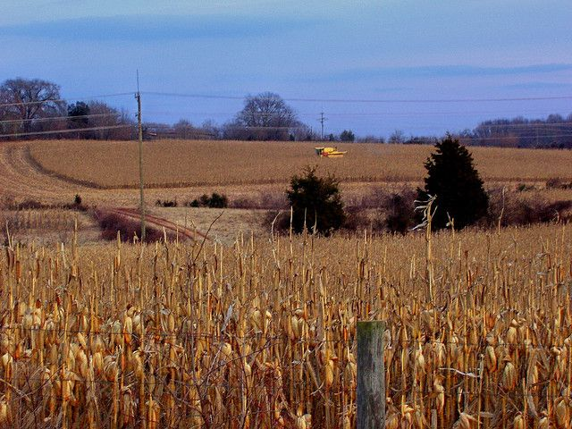 Water Risks Threaten Billions in U.S. Electric Sales, Farm Products | World Resources Institute