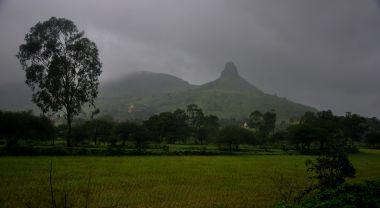 Field in Trimbak, Maharashtra, India