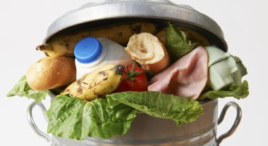 Fresh food gone to waste. Flickr/USDA