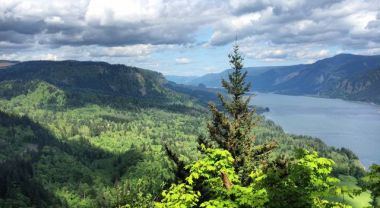 Restored forest lands in northern Oregon bring benefits to people and nature.